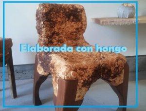 silla elaborada con hongo