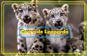 cuero de leopardo