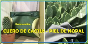cuero de cactus