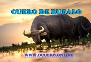 cuero de bufalo