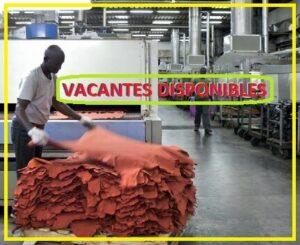 Kikha NY industria del cuero